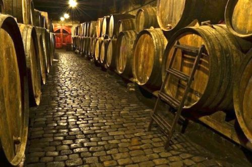 Top 10  Wineries in Tenerife